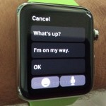 Apple Watch Text Reply Screen
