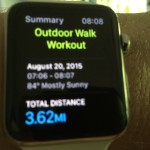 Apple Watch Workout App Example 12 of 15